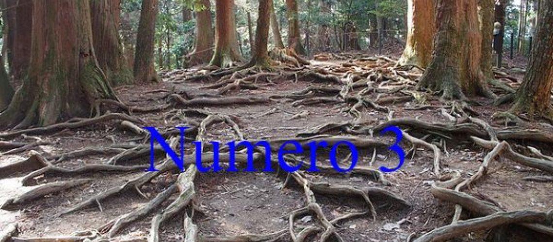 quale-albero-amore3